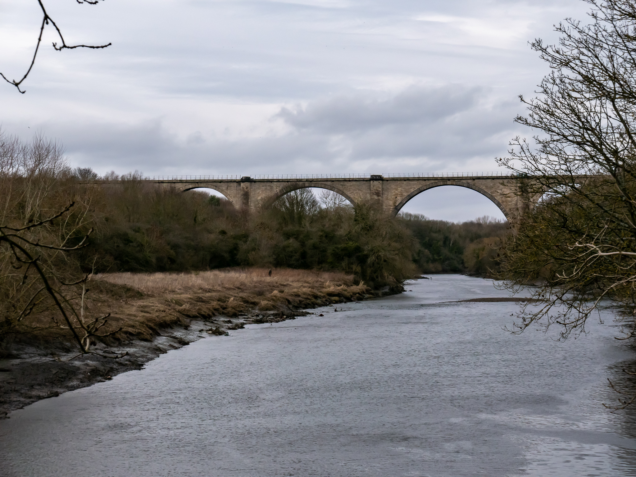 Leamside Viaduct over River Wear